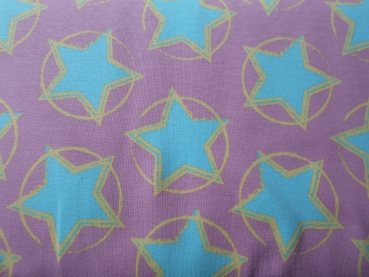 Jersey Stars in the Middle by Petra Laitner mint auf altrosa